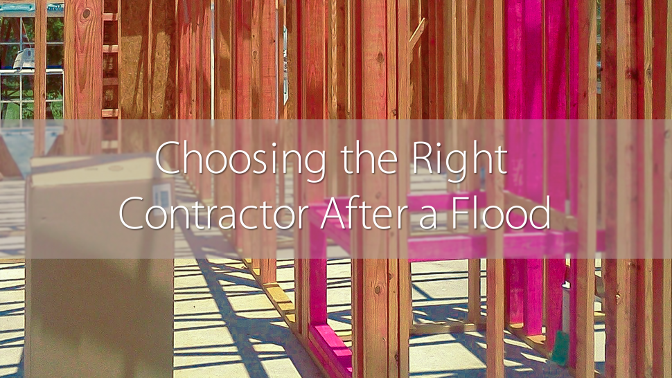 choosing the right contractor after a flood