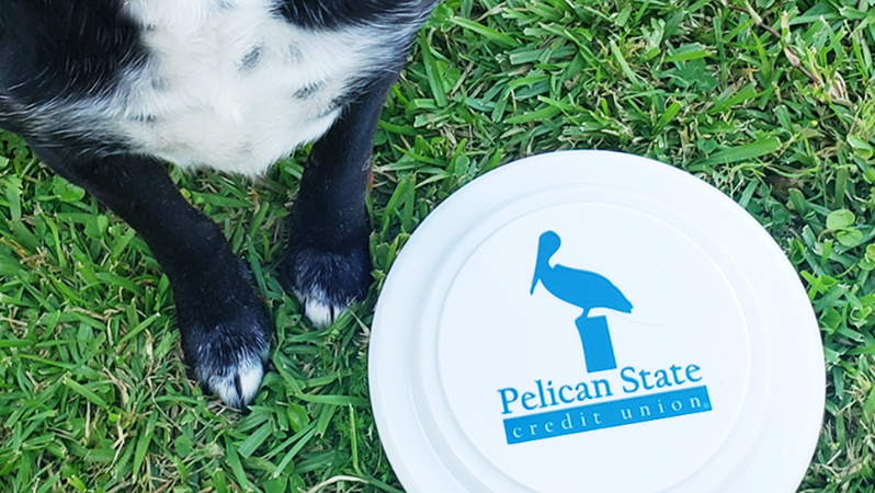 Dog next to a Pelican State Credit Union Frisbee Toy