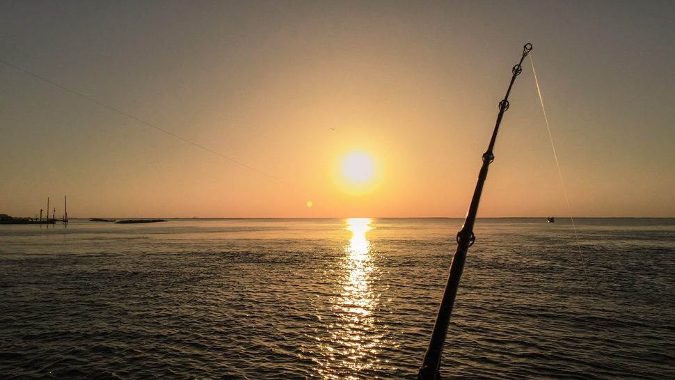 Best fishing spots in Louisiana